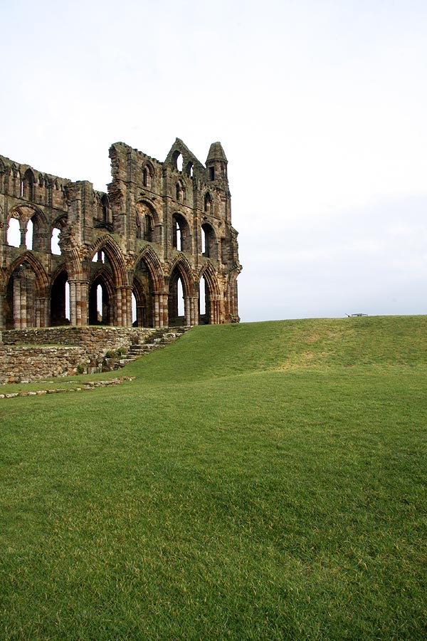 Whitby Abbey on green grass